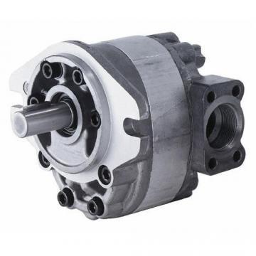 PV Series-Hydraulic Axial Piston Pump Model: PV16-PV270