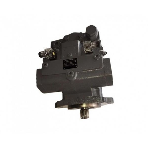 Hydraulic Bent Axis Motor A2FM63/61W-VTD027-S From Ningbo #1 image
