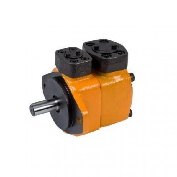 Yuken Vane Pump PV2r1 PV2r2 PV2r3 #1 image