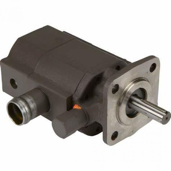 12VDC high pressure mini sprayer pump for disinfection sprayer #1 image